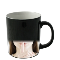 Heat Change Mug (330ml)